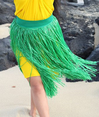 READY MADE COSTUME: GREEN BANDED ARTIFICIAL SKIRT