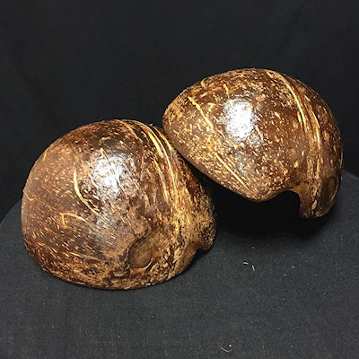 COCONUT HALVES (Instrument)