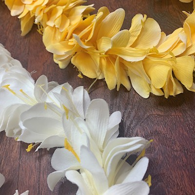 KAHILI GINGER LEI