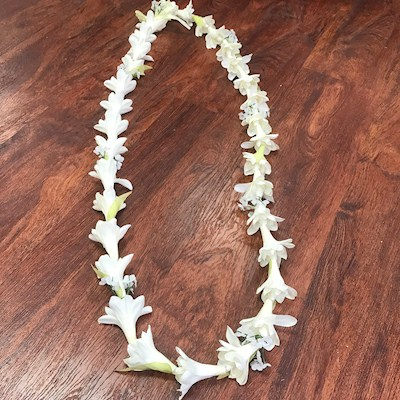 TUBEROSE LEI, X-LONG