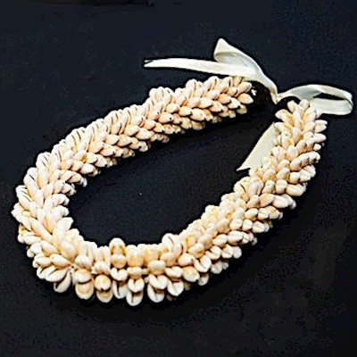 SHELL ROSETTE HEAD LEI